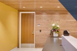 commercial wood door